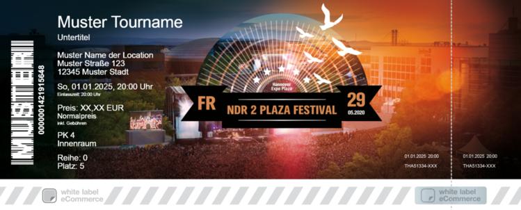Ndr 2 Plaza Festival 2021 Künstler